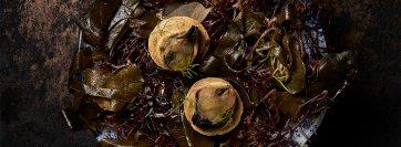 Tartaleta de algas con paté marino de bouchot